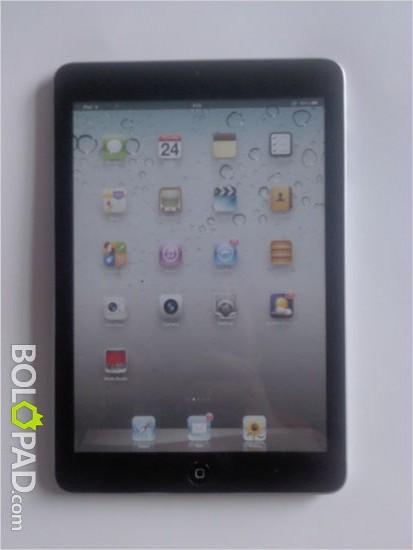 iPad-Mini-back